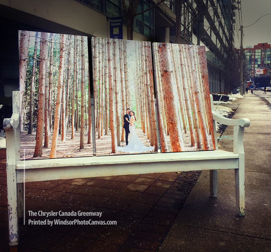 Your photos on canvas, printed in Ontario. Pay on pick-up so there's no stress!